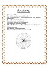 English Worksheets: Spiders