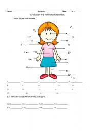 English Worksheets: Human Body