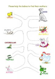 English Worksheets: Matching Exercise - Baby Animals Name