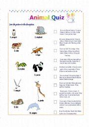 English Worksheets: Animal Quizz