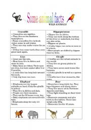 English Worksheet: Animal facts