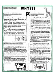 English Worksheets: WHY???(2)- B & W