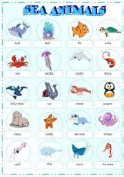 English Worksheets: sea animals pictionary (part 1)