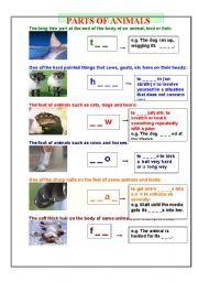 English Worksheets: animals� parts