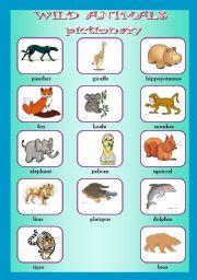 English Worksheet: Wild animals pictionary