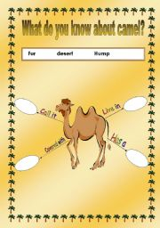 English Worksheets: camel properties