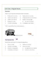 English Worksheets: Singular Nouns
