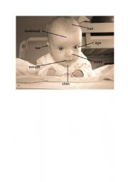 English Worksheets: face of infant