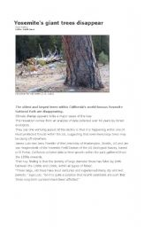 English Worksheets: YOSEMITE�S GIANT TREES DISPAPPEAR