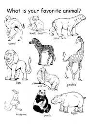 English Worksheets: Animal Theme Worksheet set