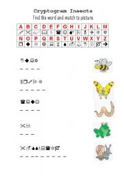English Worksheet: Cryptogram Insects