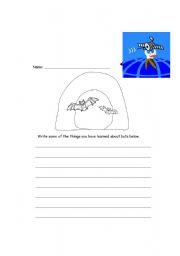 English Worksheets: Bat Facts