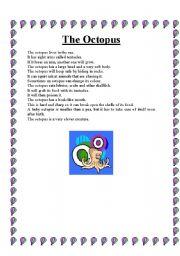 English worksheet: The octopus