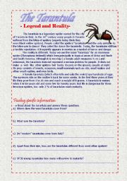 English Worksheets: The tarantula - Legend and reality