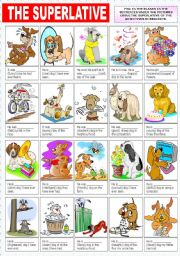 English Worksheets: THE SUPERLATIVE OF ADJECTIVES(2)
