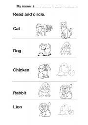 English Worksheets: ANIMALS   READ AND CIRCLE