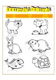 domestic animals worksheets. Black Bedroom Furniture Sets. Home Design Ideas
