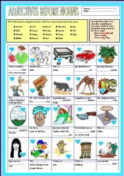 English worksheet: Adjective before nouns
