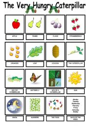 English Worksheet: The Very Hungry Caterpillar - Vocab. Pictionary -
