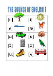 English Worksheet: THE SOUNDS OF ENGLISH 1
