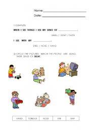 English Worksheets: 5 senses