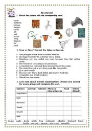 English Worksheets: FUN FACTS 2 - UNUSUAL ANIMALS 2/3
