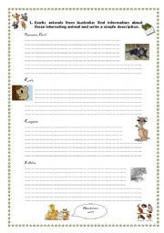 English Worksheets: FUN FACTS 2 - UNUSUAL ANIMALS 3/3