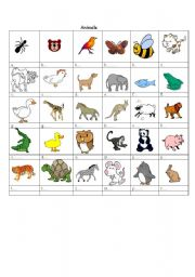 English Worksheets: animals with pictures