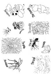English Worksheets: The insects