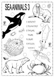SEA ANIMALS 3