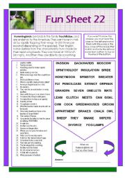 English Worksheets: Fun Sheet 22