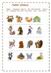 Forest Animal Math Worksheet. Forest. Best Free Printable Worksheets
