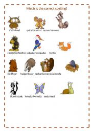 English Worksheets: FOREST ANIMALS 3