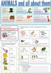 English Worksheet: ANIMALS AND ALL ABOUT THEM!