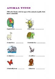 English Worksheets: animal kinds 2