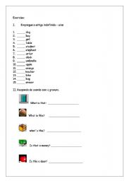 English worksheet: Exercise A or An