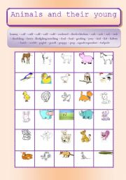 English Worksheets: ANIMALS: ANIMALS & THEIR YOUNG