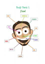 English Worksheets: Body Parts1 : Head