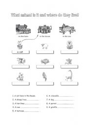 English Worksheets: What animal is it and where do they live?