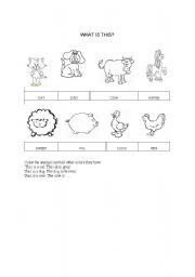 English Worksheets: Revision Domestic animals