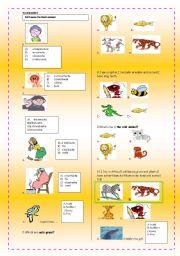 English Worksheets: ilness and describing animals