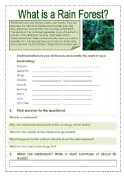 English Worksheet: Rain forest
