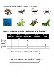 English Worksheets: animal