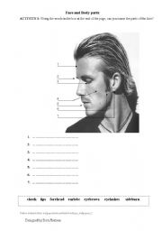 English Worksheets: Face and body vocabulary