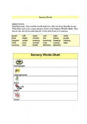 English worksheets: Sensory Words