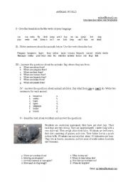 English Worksheet: Wombats and Penguins