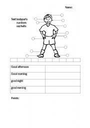 English Worksheets: Test Body