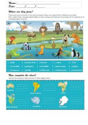 English Worksheets: Where are the animals from?