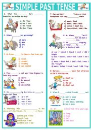 SIMPLE PAST TENSE TEST