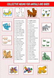 English Worksheets: collective names for animals and birds